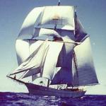 Brigantine Yankee